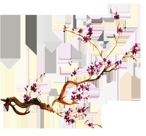 SAKURA_Sakura2