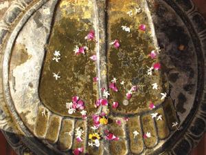 buddha noge