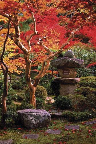 Staza prema čajnoj sobi u okviru hrama Enko rinzai škole u okolici Kyota. Osnovao ga je Tokugawa Ieyasu u XVII. st.