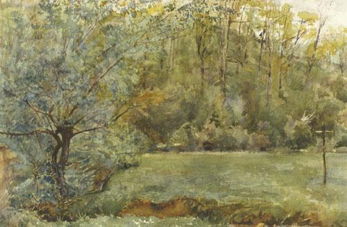 Slava Raškaj, Livada uz šumu