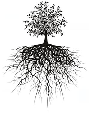 ist2_5049313-root-tree