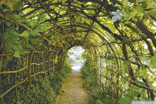 Nazvan je prema dvjema vladaricama istog imena - Eleanor od Provanse, žene Henrika III. i Eleanor od Kastilje, žene Edvarda I. Materijali i biljne vrste korišteni u vrtu vjerna su replika srednjovjekovnih.