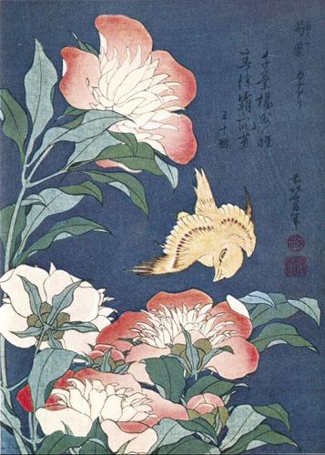 Katsushika Hokusai, Božuri i kanarinac.