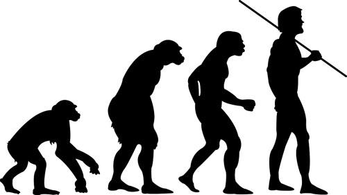 DARWIN_Human Evolution