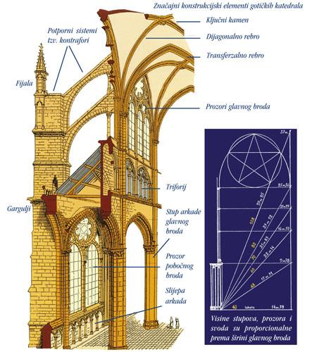 Visine stupova, prozora i svoda su proporcionalne prema širini glavnog broda