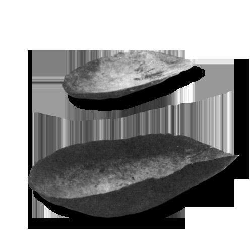 Drvene posude koje koriste Aboridžini: velika za nošenje hrane i vode, ngunma, manja koja se koristi za kopanje, wira. Drvene posude poput ovih, zajedno s torbicama ispletenim od trava, jedine su posude u upotrebi kod australskih domorodaca. Zemljano posuđe nisu nikad izrađivali, niti poznaju načine čuvanja namirnica jer uživaju u svježe prikupljenim plodovima.