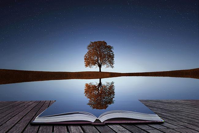 Odraz stabla u knjizi