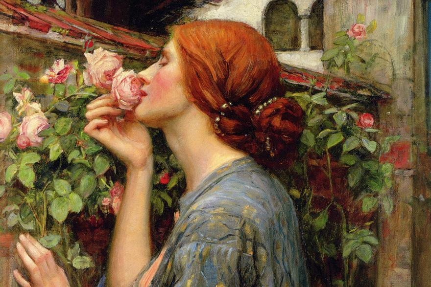 Duša ruže