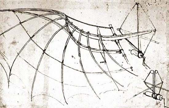 Biomimikrija i Leonardo da Vinci