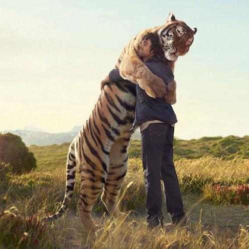 covjek-grli-tigra