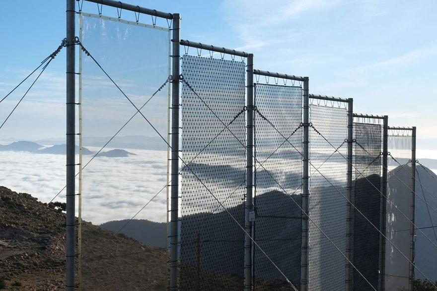 Hvatači magle