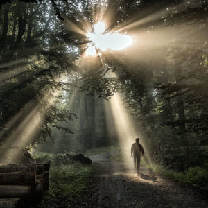 svjetlo