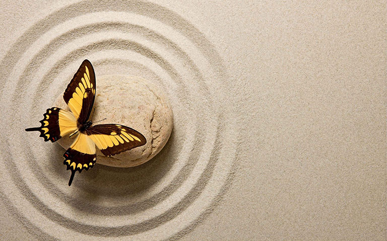 Eckhart-Tolle-leptir