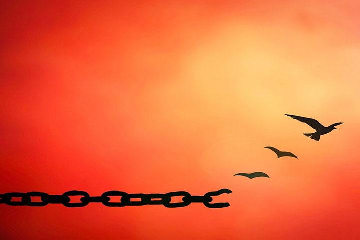 ceznja-za-promjenom-ptice-lanac