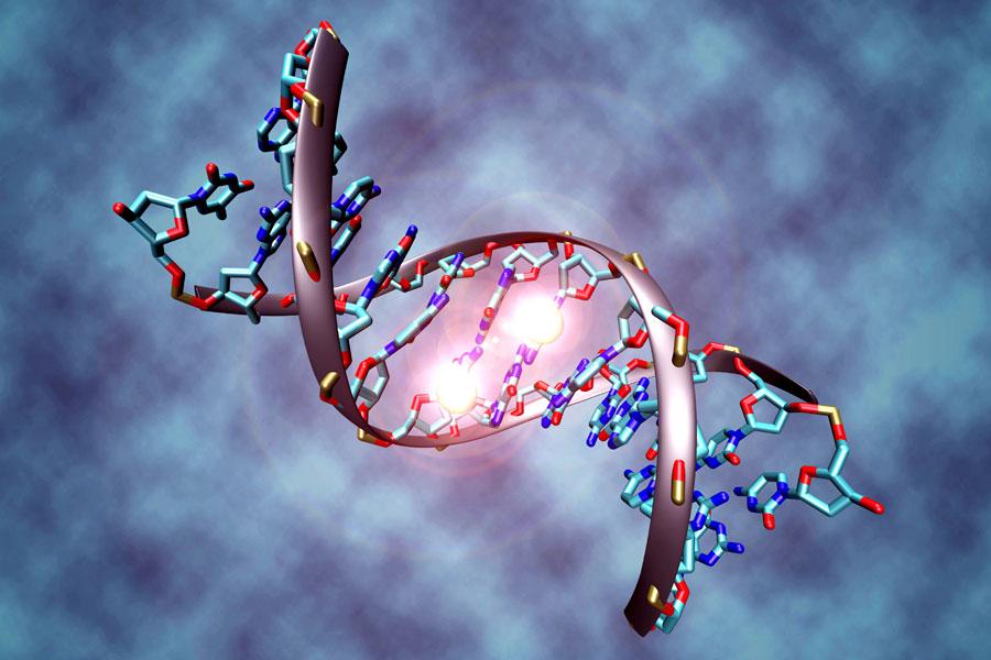 epigenetika-prikaz-dnk