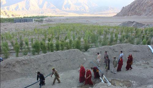 Sonam-Wangchuk-IceStupaTrees