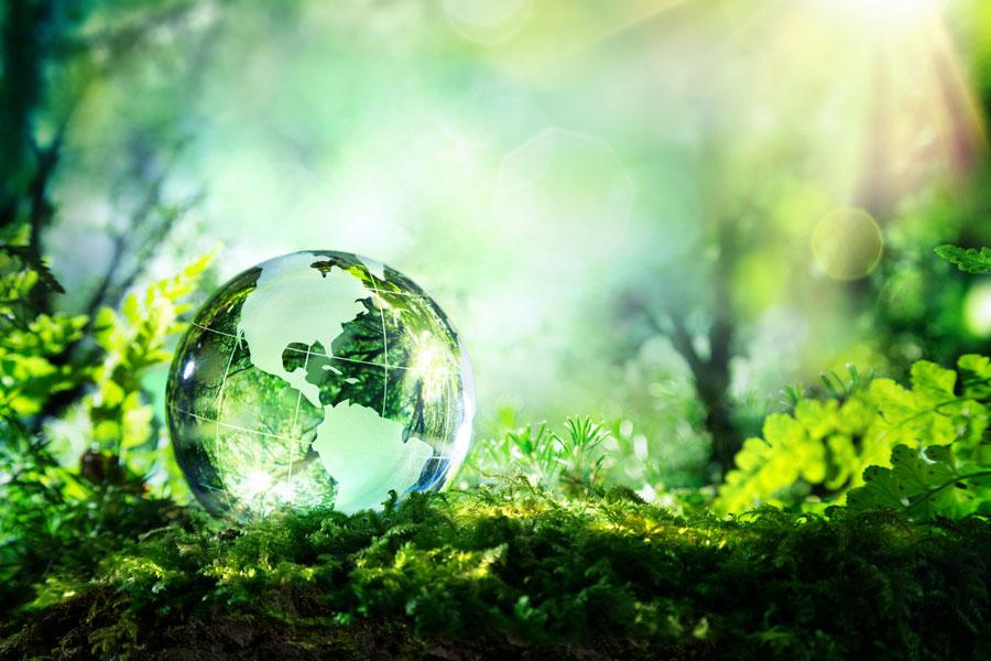 Uvodnik-zemlja-na-zelenom