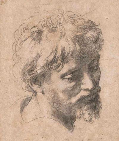 Glava mladog apostola. Crtež nacrtan crnim ugljenom oko 1519-20. godine kao skica za Rafaelovu posljednju sliku Isusovo preobraženje.
