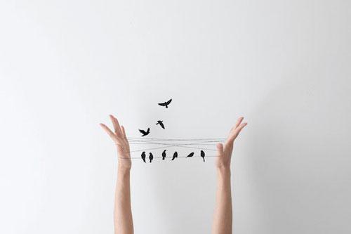 postoji-li-slbodna-volja-ruke-i-ptice