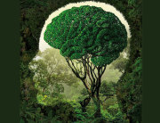 fil-ekologija-zeleni-covjek