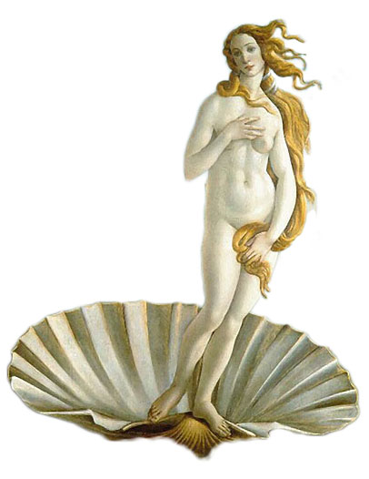 Skoljka---Venera