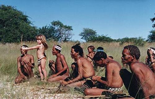 Tippi6-domoroci