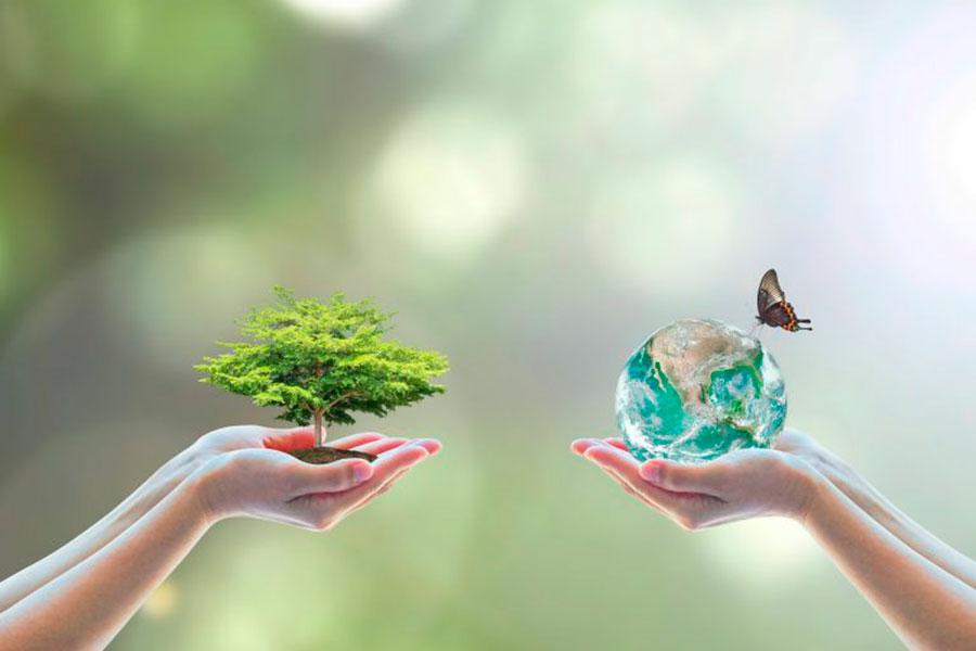 Zdravlje-za-dusu---Ravnoteza