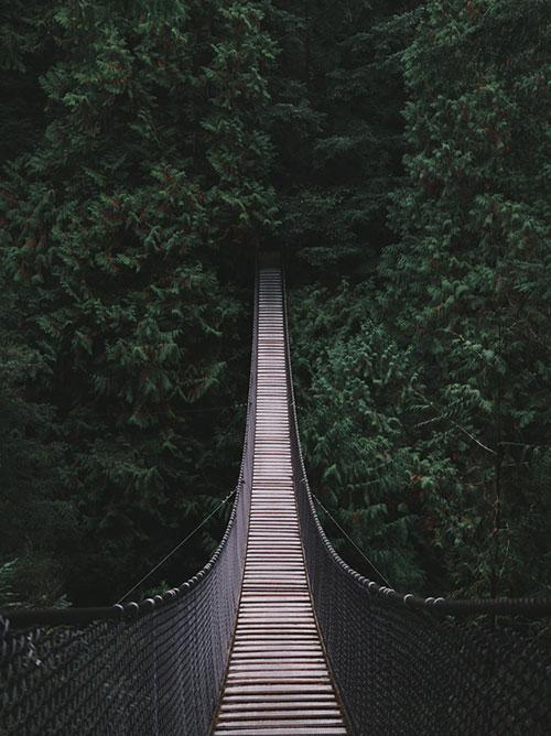 Platon-most-u-planinama
