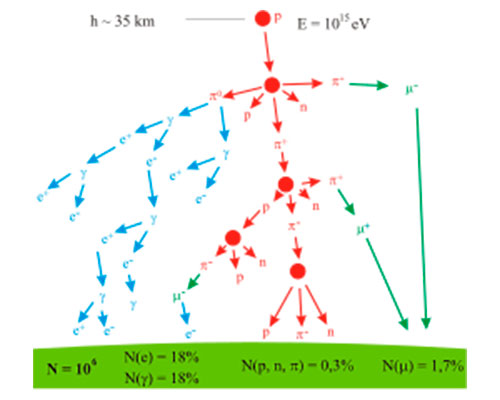 velika-otkrica-mionska-radiografija