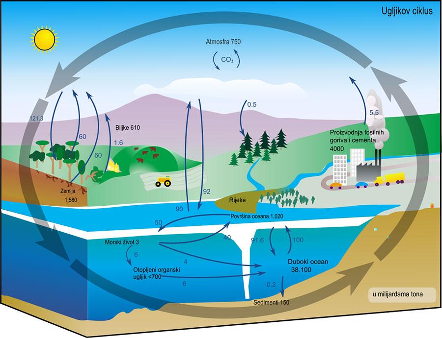 Potresi---Kruzenje-ugljika