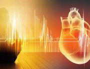 mozak-u-srcu-srce-i-zemlja