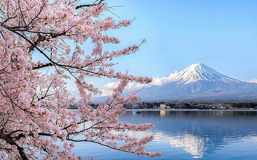 Harmonija-planina-fuji