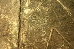 Nazca-linije-pauk