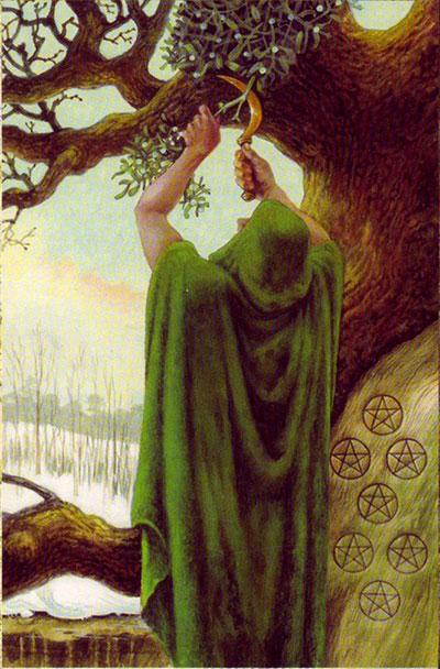 Imela-druid