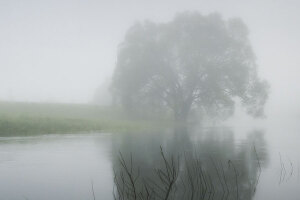 image-misty-river-large-open