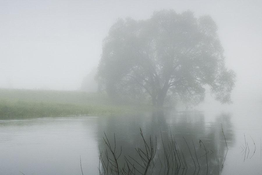 image-misty-river-large-open