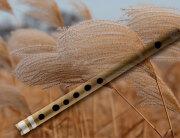 flauta-sas