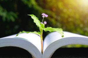 zakoni-prirode-knjiga-i-cvijet