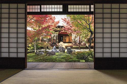intuicija-zeb-budizam-vrata-otvorena