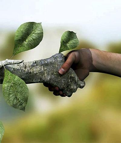 08-citat-ruka-prirode